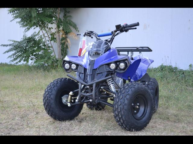 ATV Oferta Warrior M-8