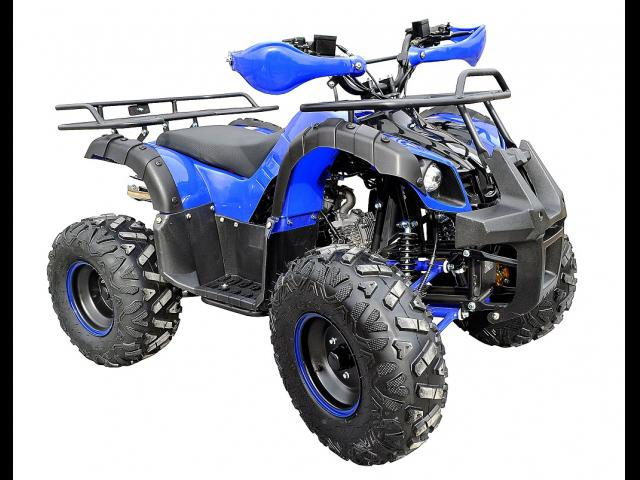 ATV Nitro Grizzly OffRoa
